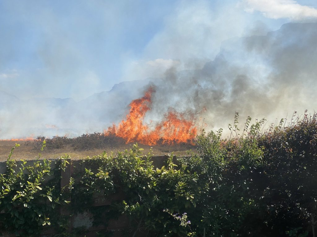 Fire breaks out at Rondebosch Common