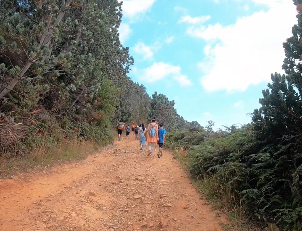 Take a hike: Woodstock Cave