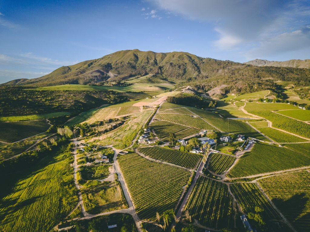 WIN: Four fabulous Wellington Wine Route experiences