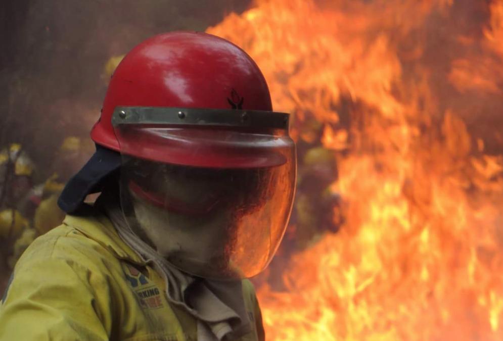 Twitter/Working on Fire