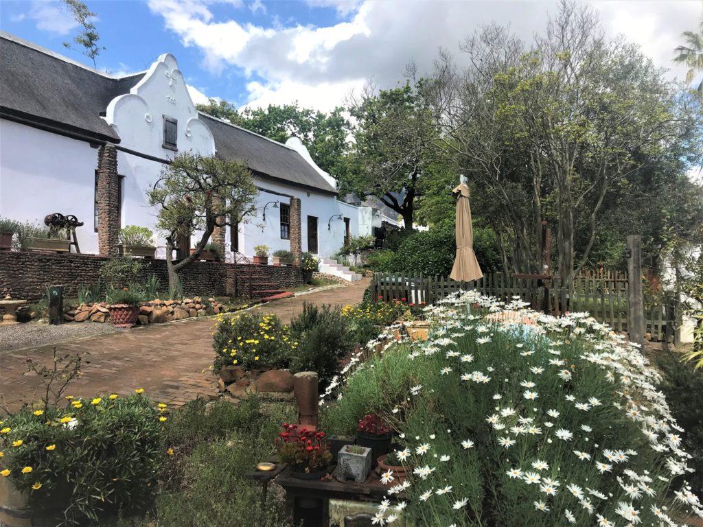 Oude Wellington Wine & Brandy Estate - a story of survival