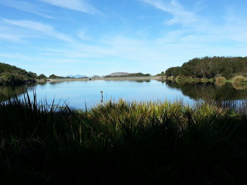 Body of a 69-year-old man found floating in Silvermine Dam