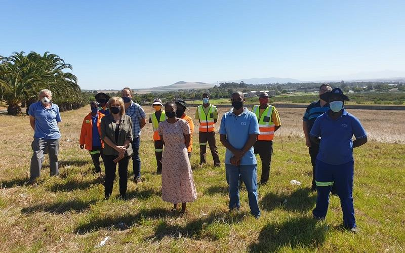 Alien vegetation cleared in Durbanville to allow for endangered Cape Fynbos to flourish
