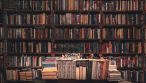 Incredible books written by Cape Town-based authors
