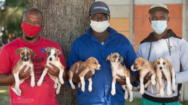 Adopt-a-Pet animal shelter set to close for good