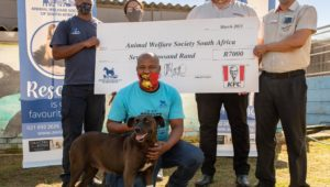It's all good - An update on Cape Town's favourite pooch