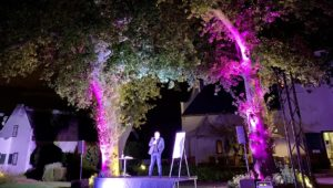 Laughter on Steenberg lawns with Alan Committee