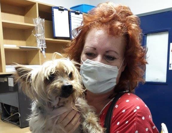Yorkshire Terrier Teddy Swallows Hook, Line & Swivel