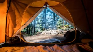 10 best camping and caravan spots in Cape Town