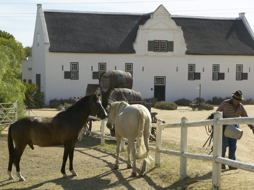 From grape vines to yummy food, Groote Post never disappoints