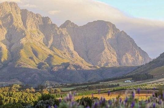 Must-see restaurants along the Franschhoek Wine Valley