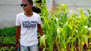 Elsies River youth exchange drugs and crime for vegetable farming