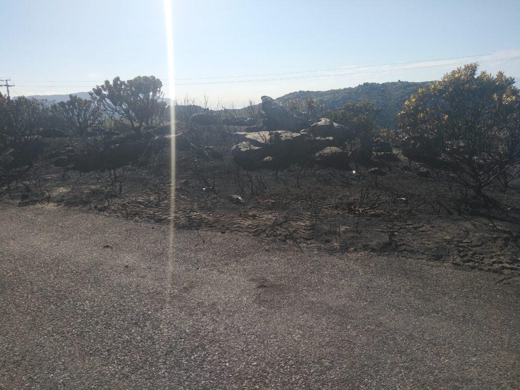 Simon's Town fire