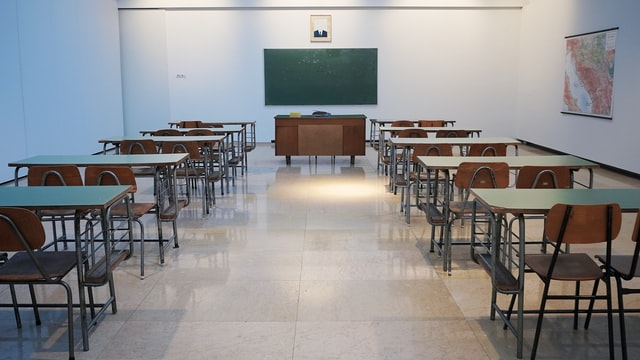 Primary school learners to resume daily in-person lessons in July