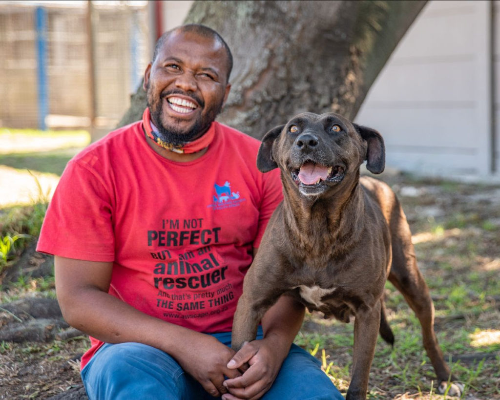 The Animal Welfare Society of SA - Our local pet heroes