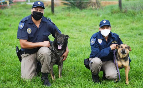Two of Cape Town's K9 officers retires