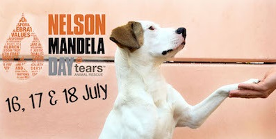 Register to Volunteer at TEARS Animal Rescue for Mandela Day 2021