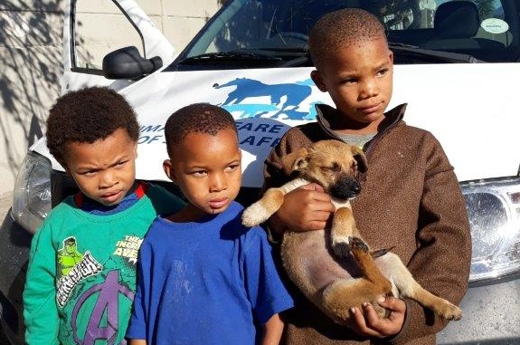 Celebration of a good deed marred by alleged theft of puppy