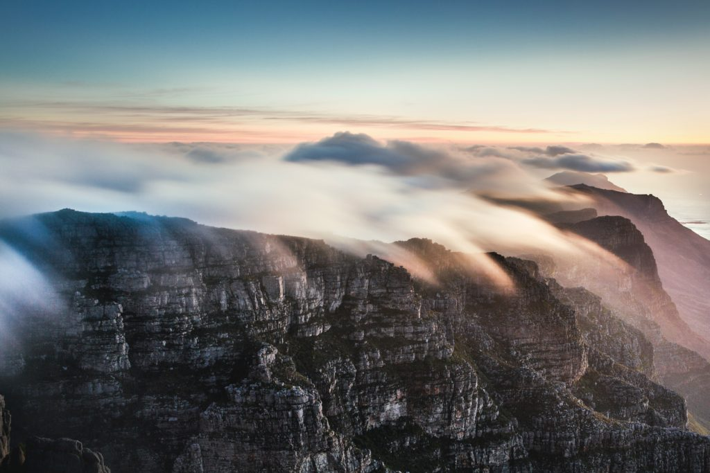 Progress for Friends of Table Mountain