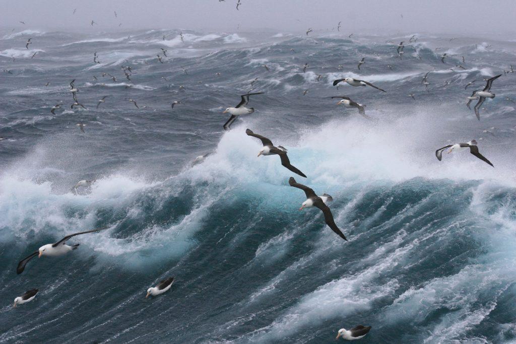 Unsplash: Weather warning Western Cape