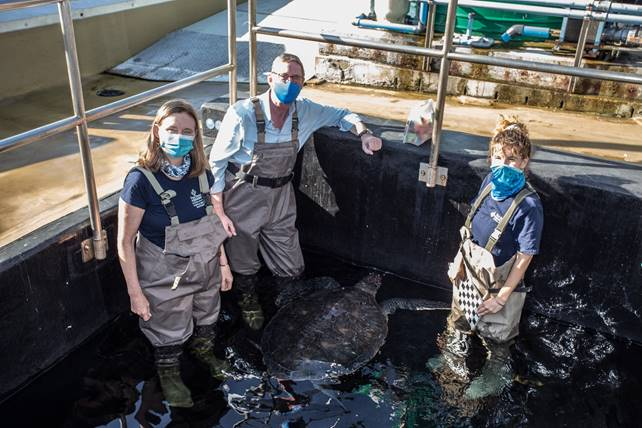 The V&A Waterfront celebrates and supports World Oceans Day