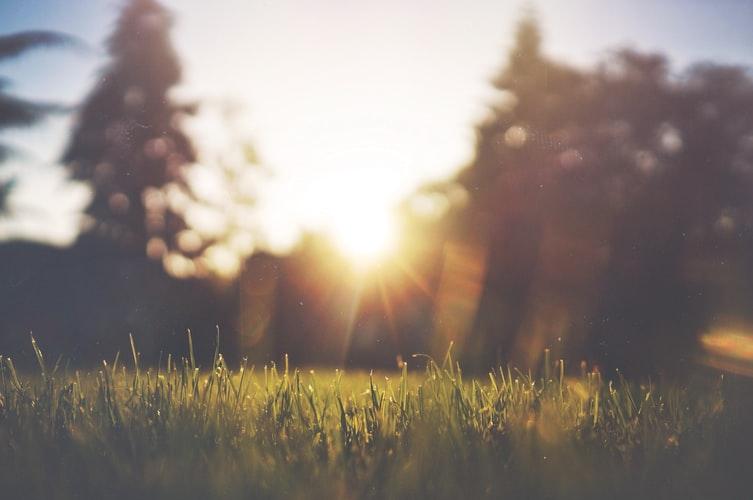 A gentle stroke of sun - Sunday Forecast