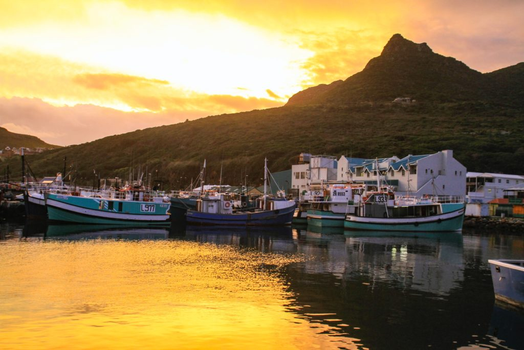 Cruises and boat adventures around Cape Town