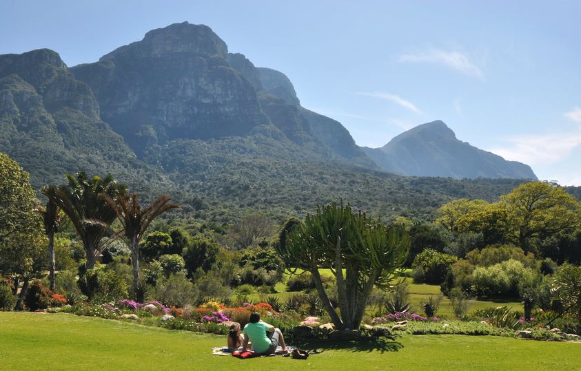A return of picnic dreams with Kirstenbosch - level 3 perks