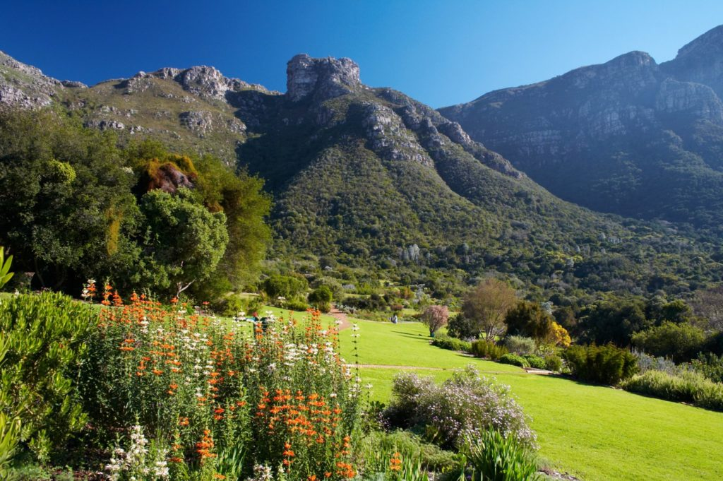 Adventure with the extended Kirstenbosch Winter Wonders Special
