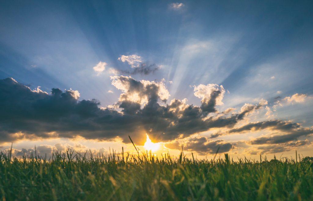 A day of sunshine - Thursday Forecast
