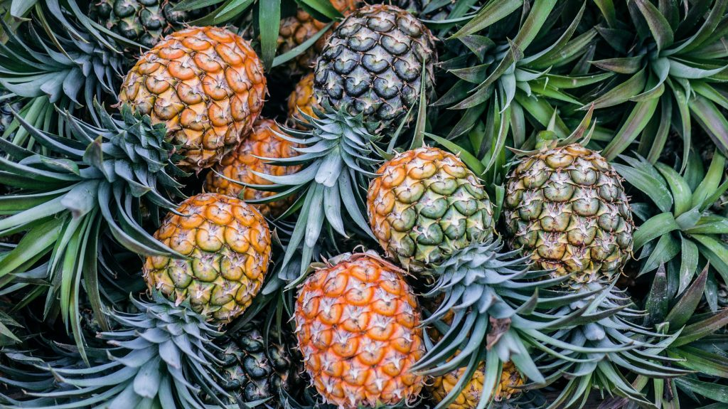 The pineapple express: Booze-ban impacts see pineapple prices increase by 74%