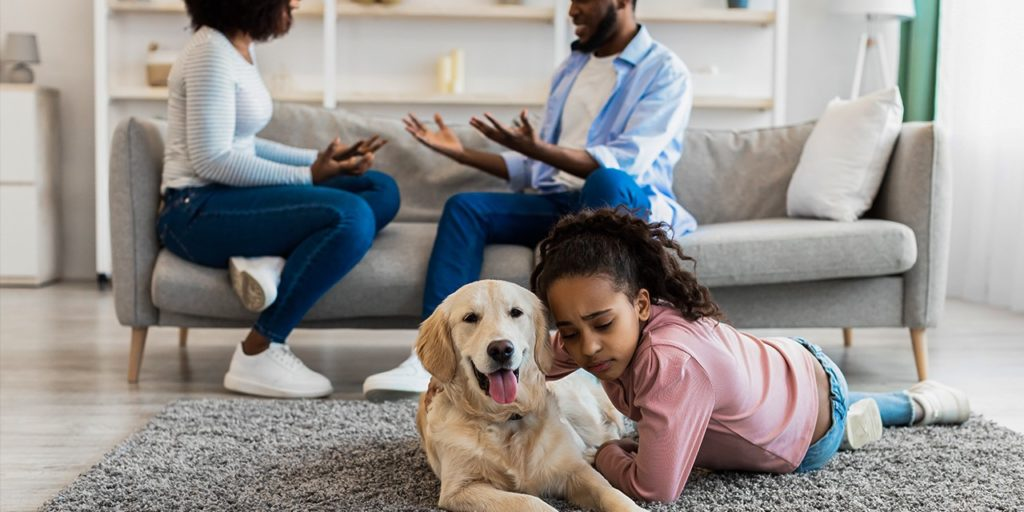 Who keeps pets in a divorce?