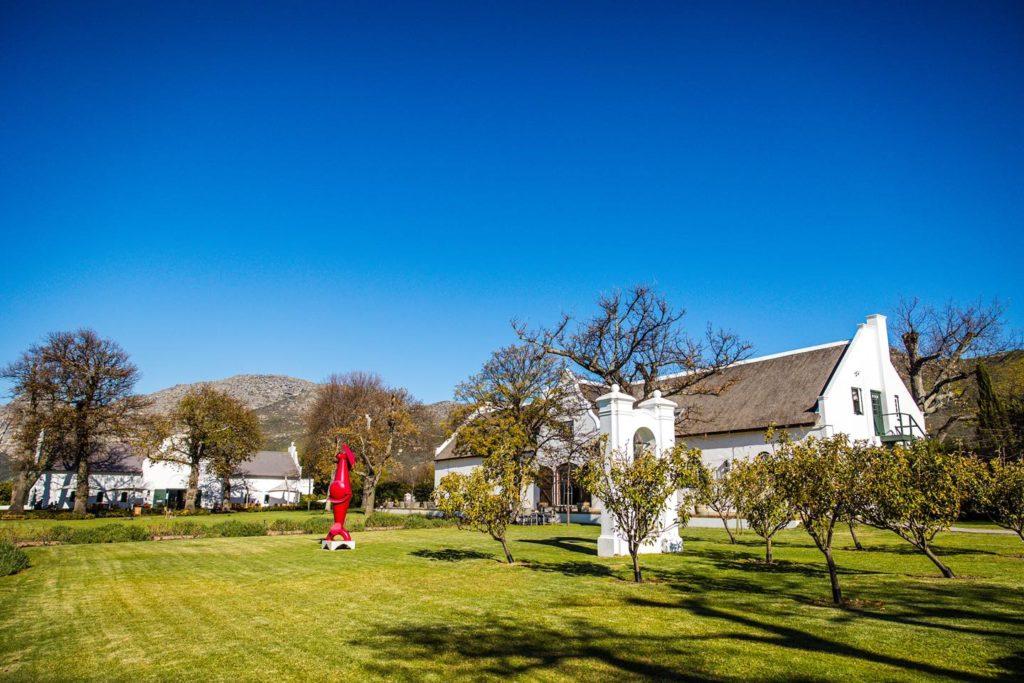 Steenberg Wine Farm supports entrepreneurship during Women's Month