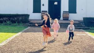 kids boschendal tree house