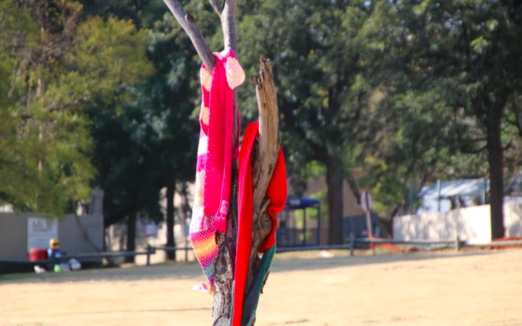 Why you might see scarves scattered in public: Secret Scarf Mission SA