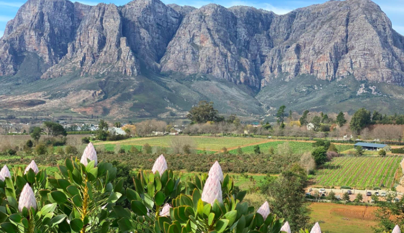 Get ready for your next adventure: Explore the Stellenbosch region like never before