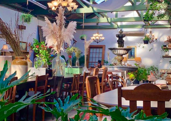 The cafe of Tarzan's dreams: a jungle chest of foodie treasure at Our Local