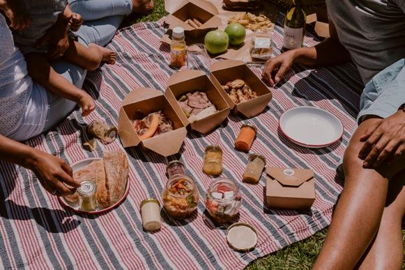 Visit Stellenbosch unveils exciting new festival of gardens
