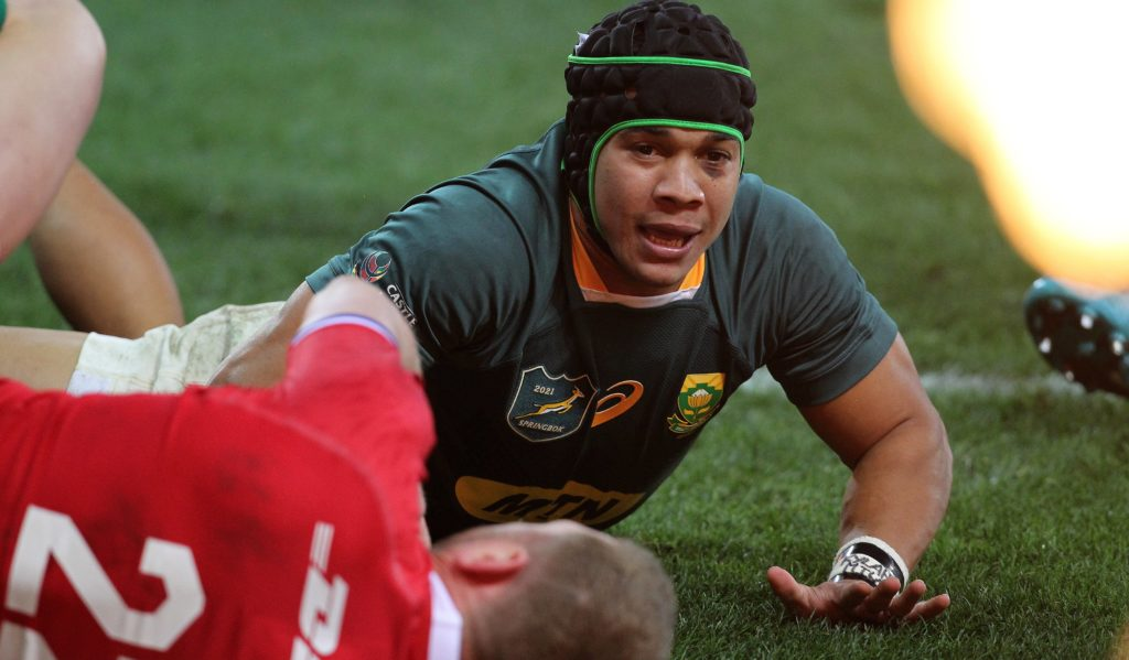 Springboks vs Lions final test series