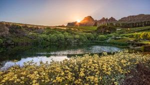 Stellenbosch wine estates that are off the beaten track