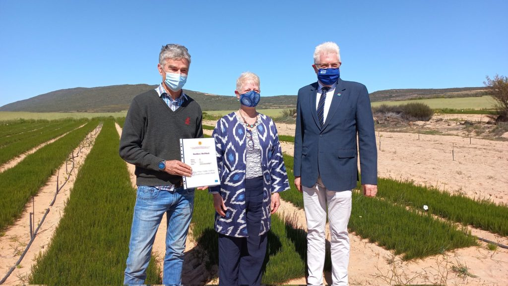 Rooibos is the first African product to receive PDO status from the EU