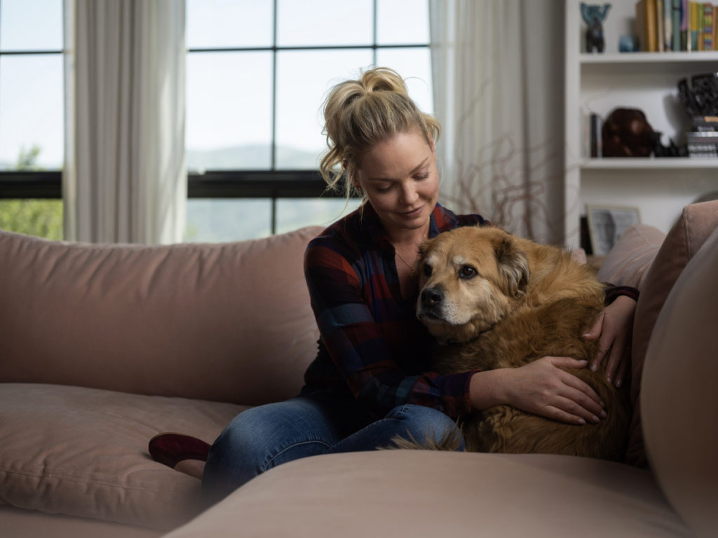 South African vet receives support from Katherine Heigl