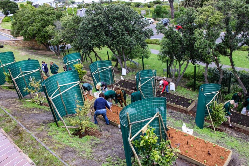 Camps Bay High School launches their heartwarming Garden of Hope