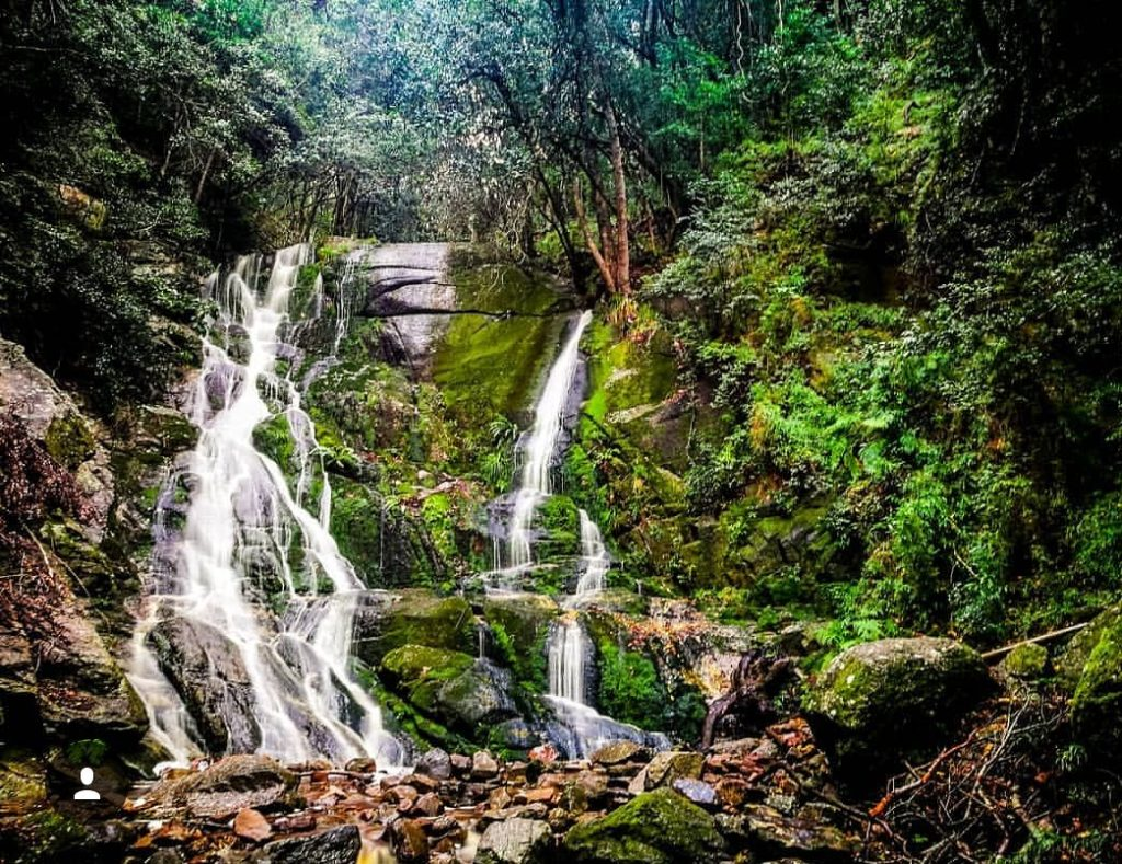 Skeleton Gorge Waterfall hike: a nature lover's paradise