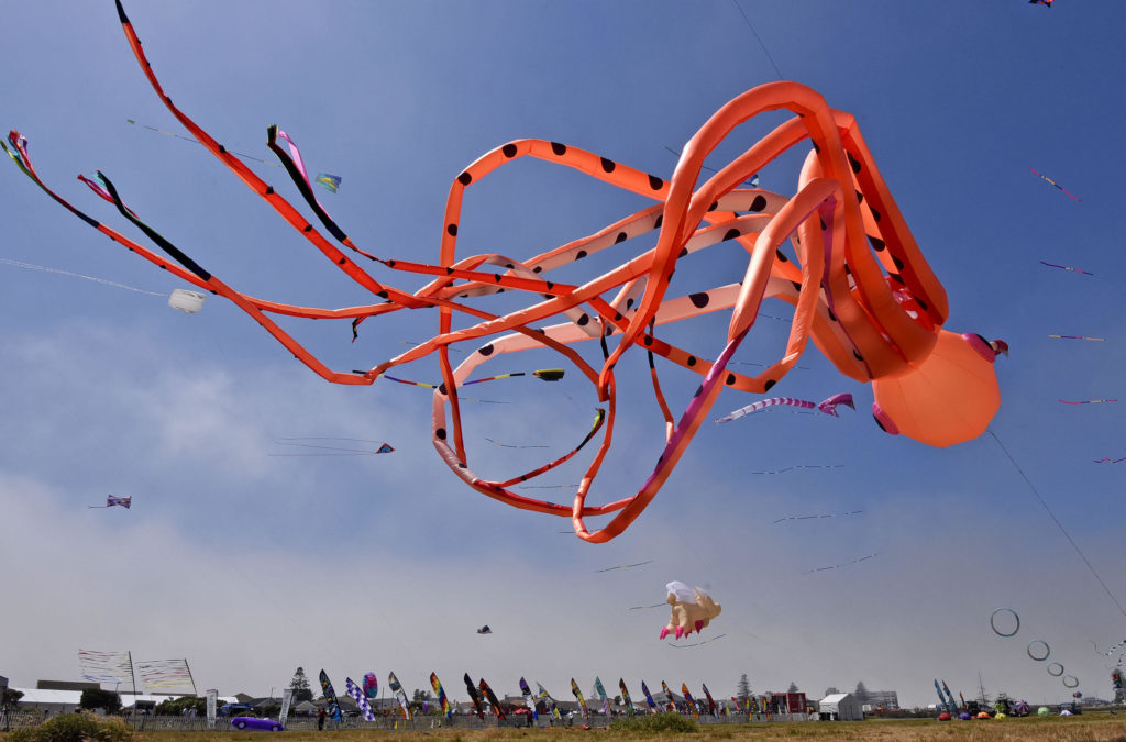 Grab your kite and get ready to fly at the 27th Cape Town International Kite Festival