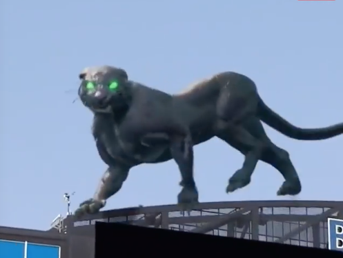 This panther is incredible, but imagine a virtual big 5?