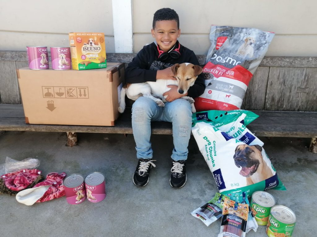 Riley's 10th birthday donation drive aimed at feeding stray and abandoned dogs