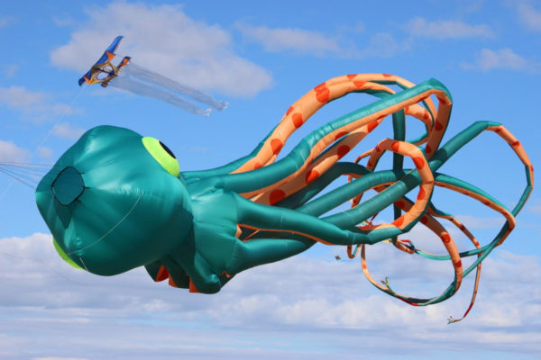 It's time to touch the sky at the 27th Cape Town International Kite Festival