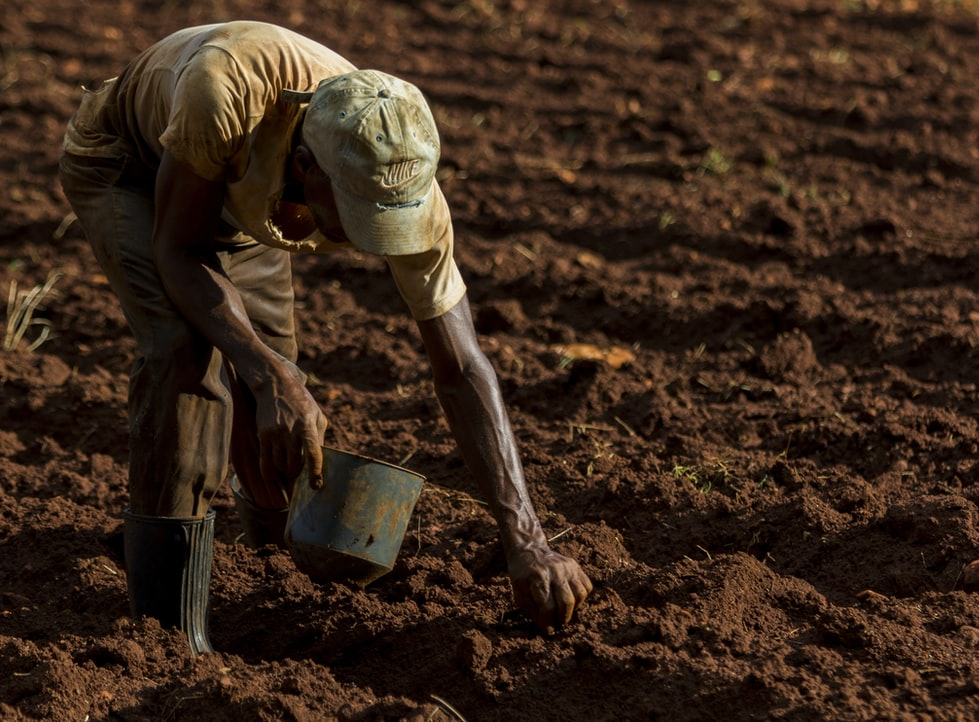 US farm sued for paying black locals less than white South Africans