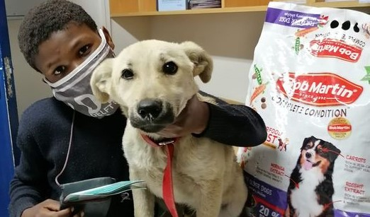 Young boy from Philippi makes a difference by keeping pets healthy and sterilised